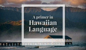 hawaiian language primer
