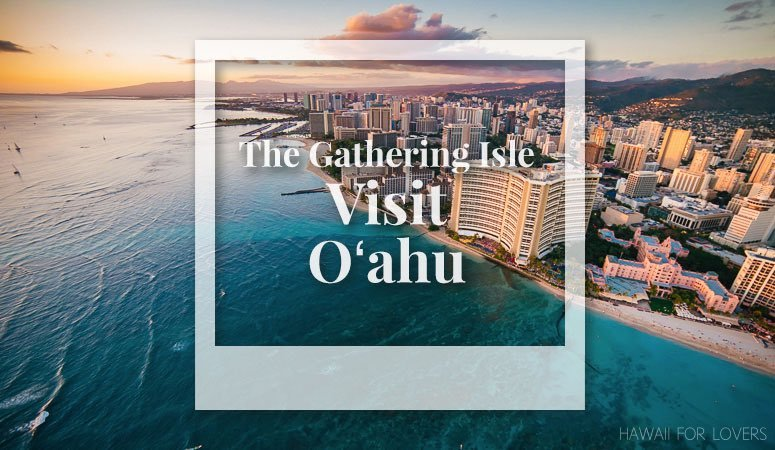 visit the gathering isle of oahu
