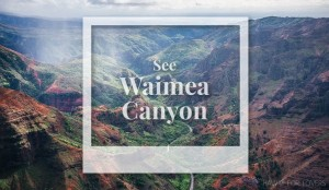 see waimea canyon