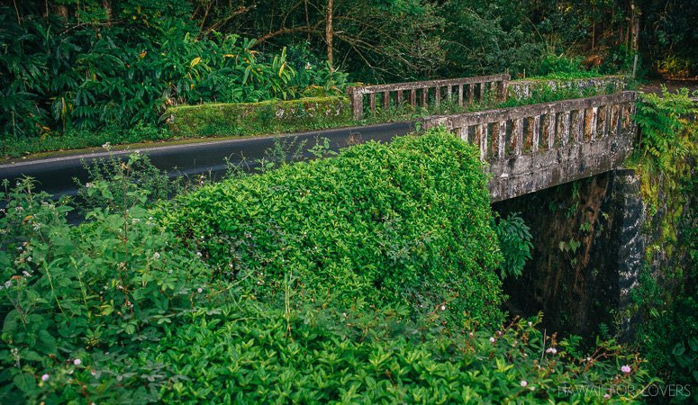 one of the many old road to hana bridges