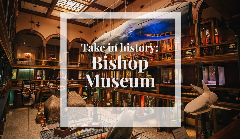 take in history at the bishop museum